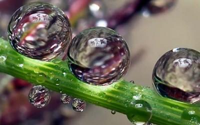 Магични дождовни капки