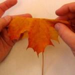 Есенски букет