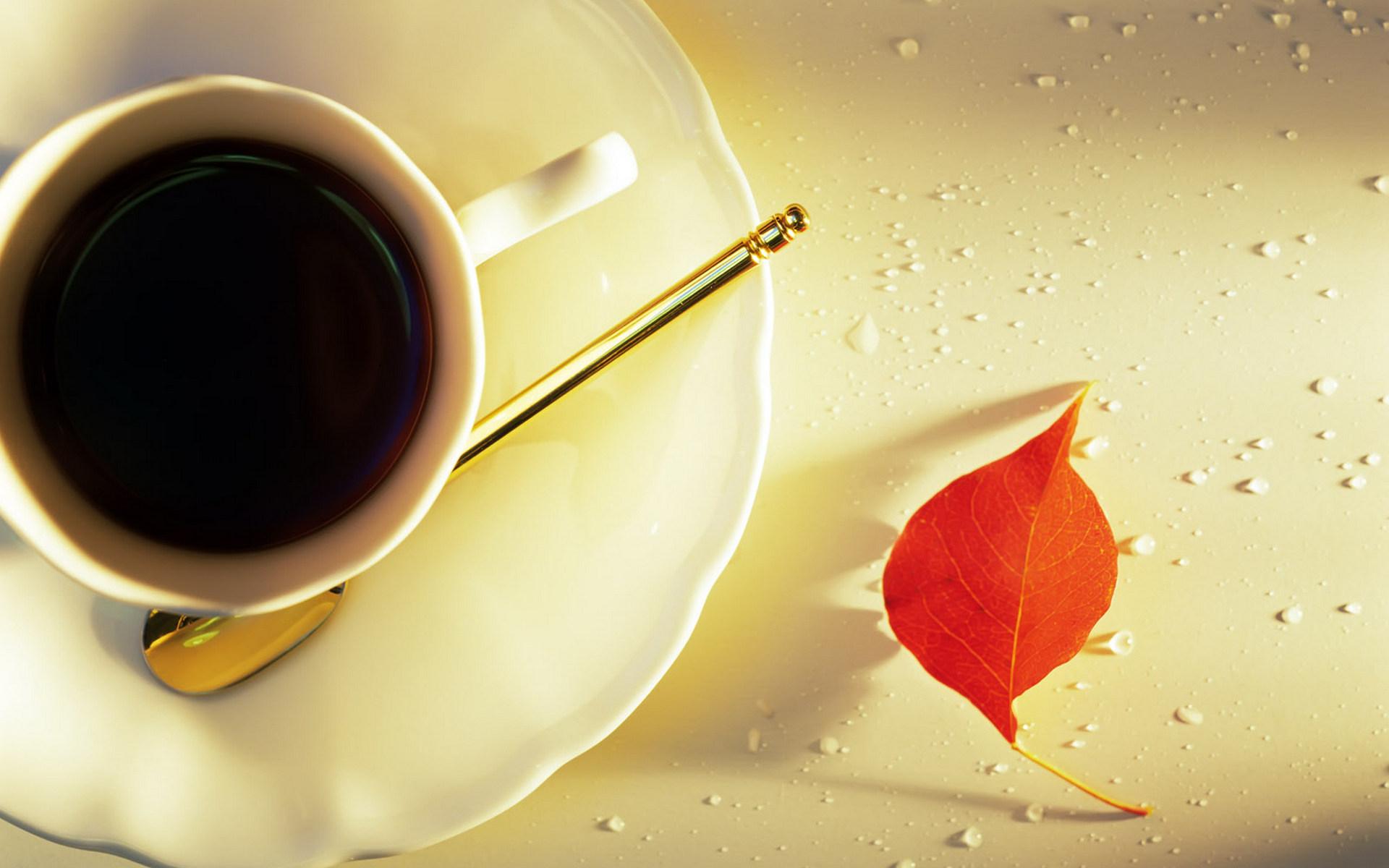 Кафе-позадина за вашиот десктоп #10