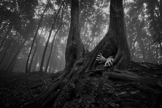 (25) Неверојатни црно-бели фотографии