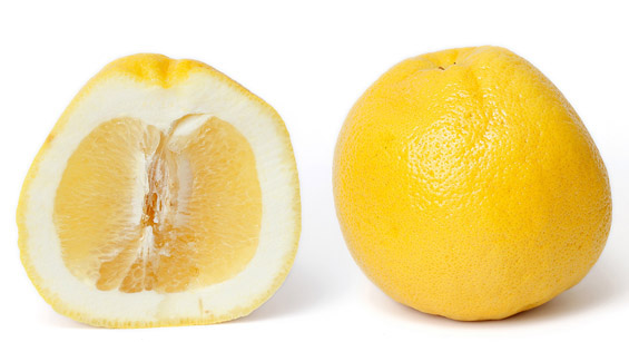 Цитрусни овошја
