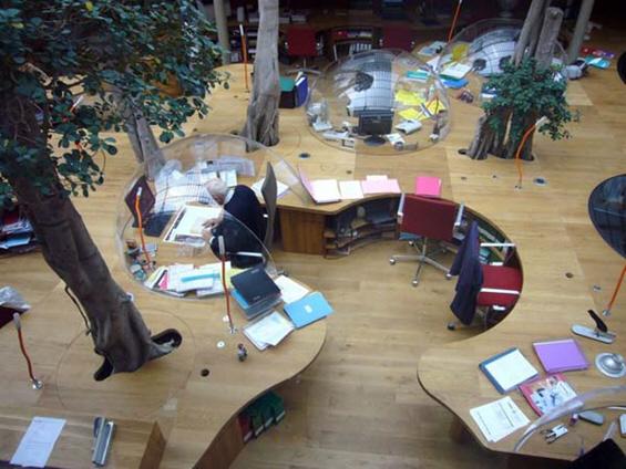 Атрактивен канцелариски дизајн со вегетациски шмек