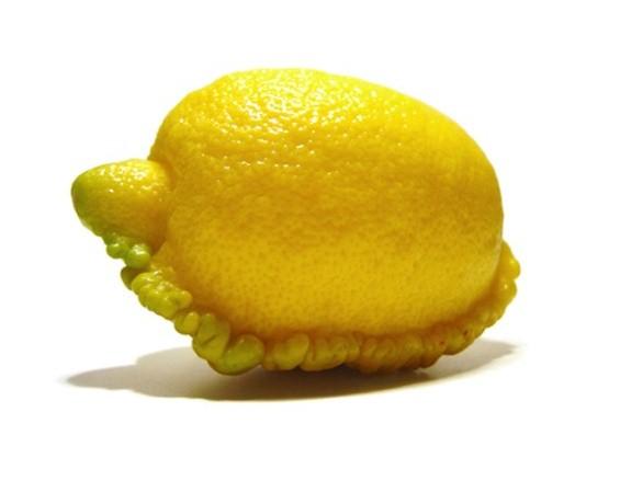 Мутирани плодови