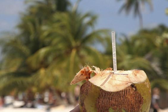 Кафе во кокосов орев