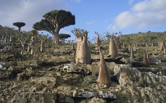 10 природни феномени на земјата