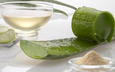 Како да направите домашни производи за капење од алое вера