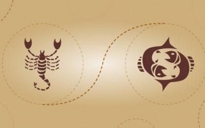 Скорпија и риби - пријателска комбинација