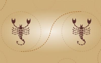 Скорпија и скорпија – пријателска комбинација