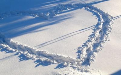 Трагите во снегот