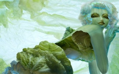 Заводливи девојки направени од зелка