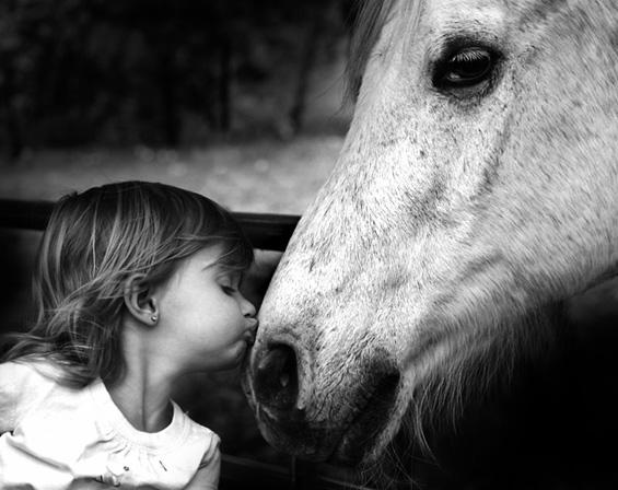 Зошто децата ги сакаат животните?