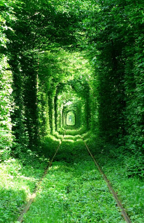 Тунелот на љубовта