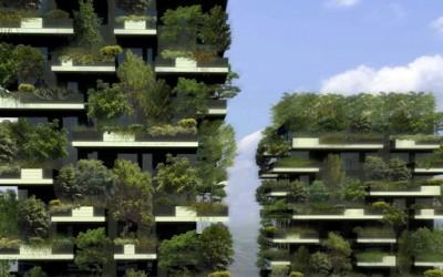 Вертикална шума