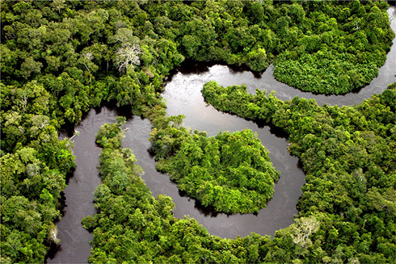 Новите 7 светски чуда на природата