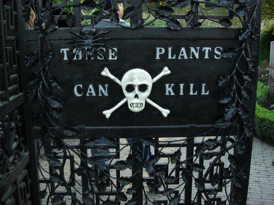 Најсмртоносната градина во светот