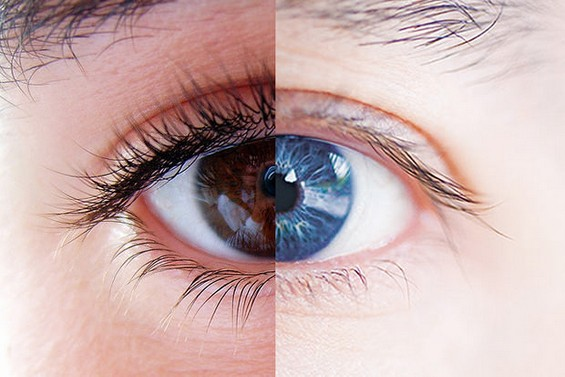 Мажите и жените навистина го гледаат светот различно