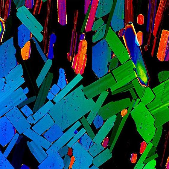 Алкохолот под микроскоп