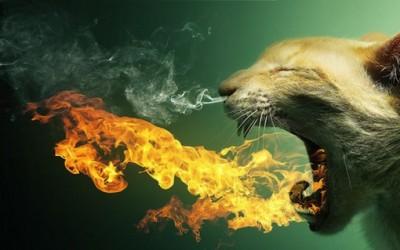 Магичен животински свет креиран во фотошоп