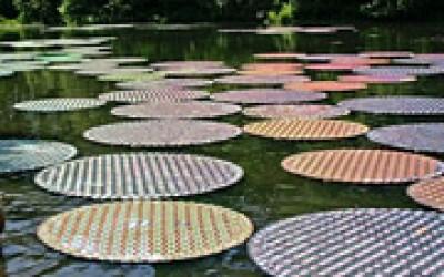 Колоритни водни цвеќиња направени од 65.000 рециклирани цедеа