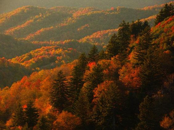 Тајната на живописните есенски зајдисонца