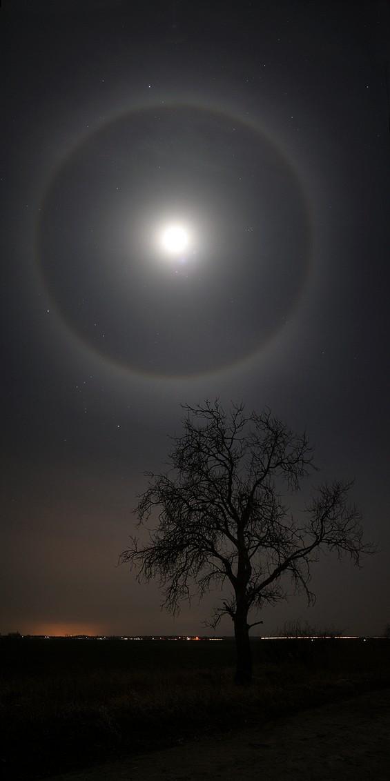 Феноменот ореол околу месечината
