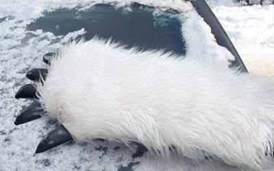 Кул стругалка за отстранување снег од ветробранско стакло