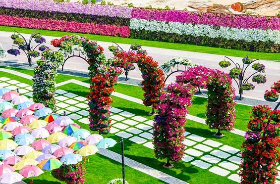 Нова топ атракција во Дубаи - огромна цветна градина која го одзема здивот