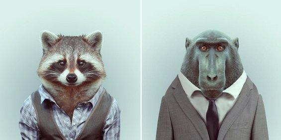 Модерните пријателчиња од зоолошката градина