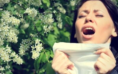 Како да ја преживеете сезоната на алергиите?
