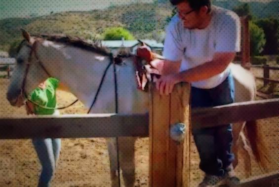 Како да се качите на коњ?