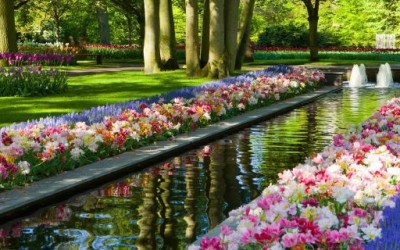 (0) Чекај ме во тајната градина...