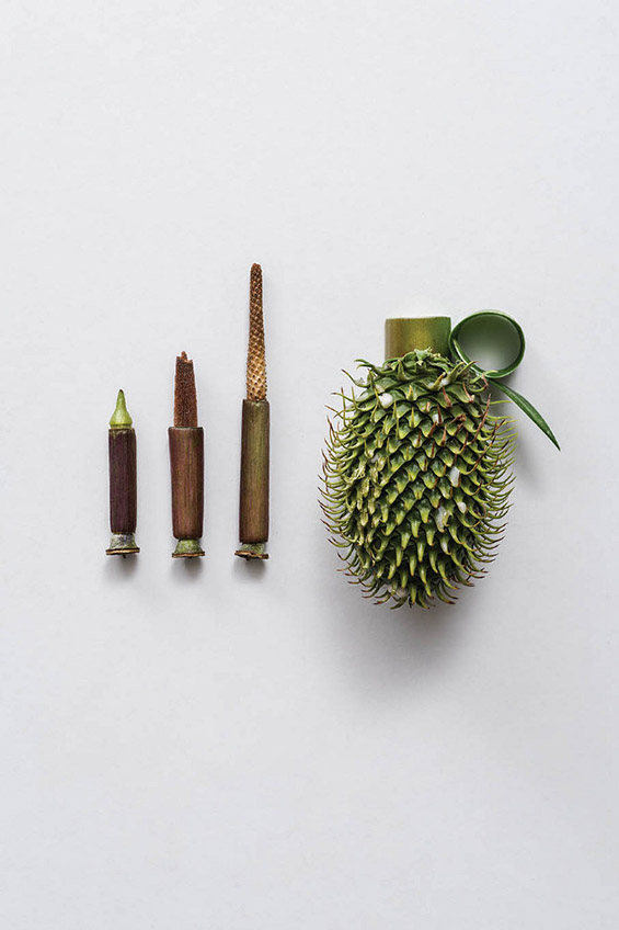 (3) Тотално безопасно оружје