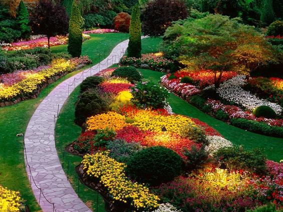Чекај ме во тајната градина...
