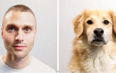 Како би ви изгледал животот да бевте куче?