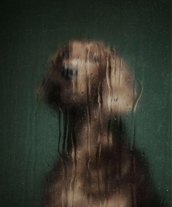 (1) Емотивни портрети на напуштени кучиња