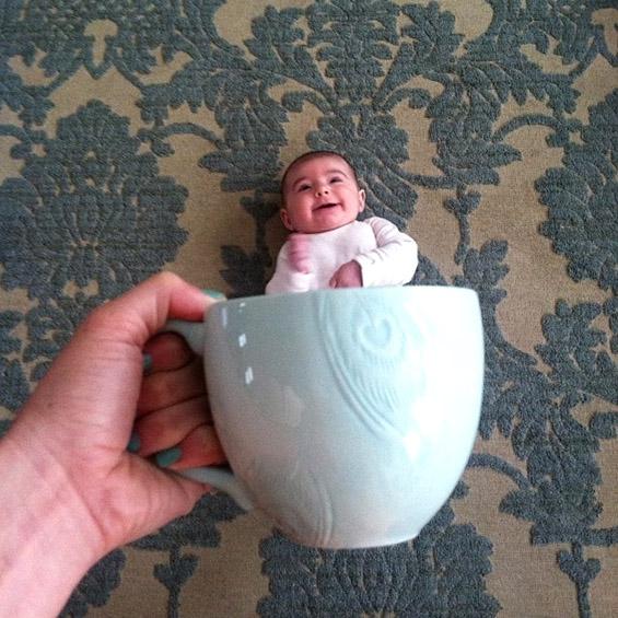 Бебиња во филџан