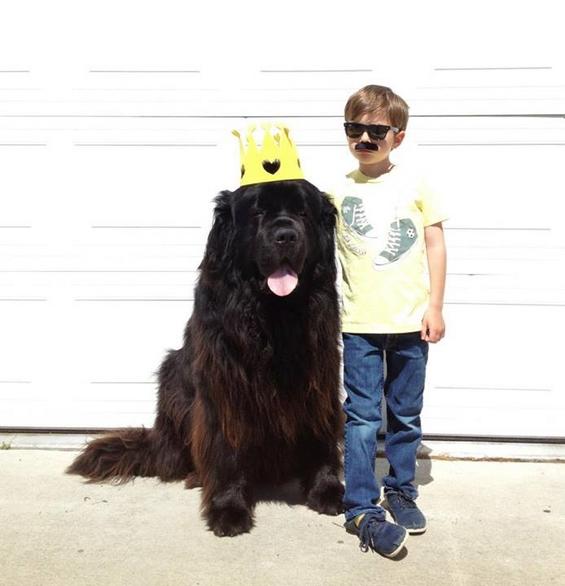 Авантурите на четиригодишниот Џулијан и неговото големо куче Макс