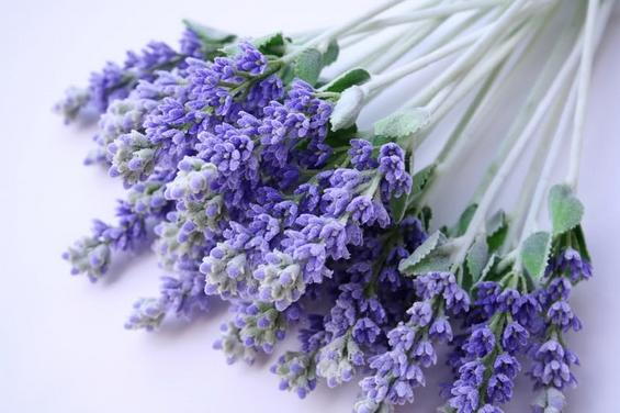 5 етерични масла кои ќе ве ослободат од стресот