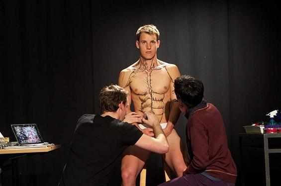 Како најдобро се учи анатомија?