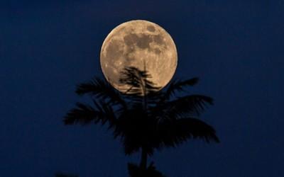 10 прекрасни фотографии од полна Месечина