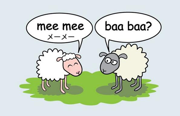 Како зборуваат животните во различни земји?