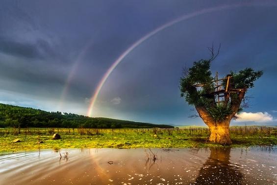 Спектакуларното двојно виножито фотографирано ширум светот