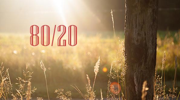 Како да го примените правилото 80/20 во вашиот живот?