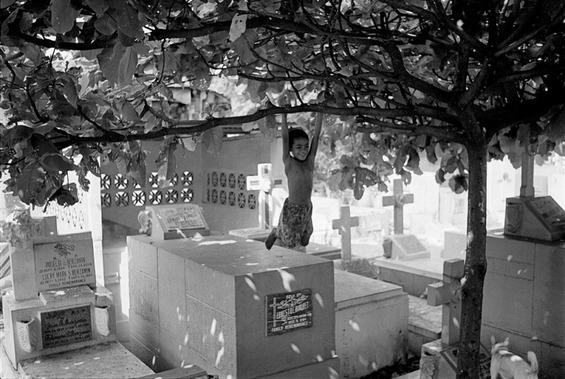 Луѓе кои живеат на гробишта