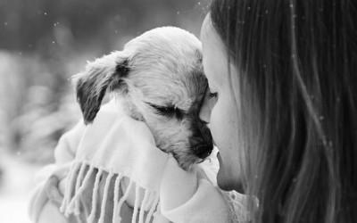 Срцепарателни фотографии од луѓе кои се збогуваат со своите миленичиња