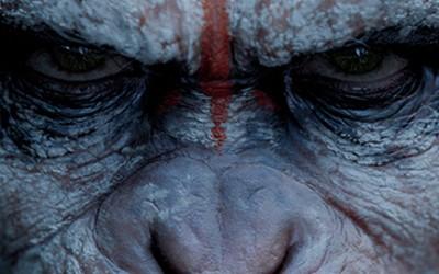 """Официјален трејлер за новото продолжение на """"Планетата на мајмуните"""""""