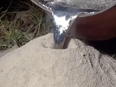 Што ќе се случи доколку истурите течен алуминиум во мравјалник?