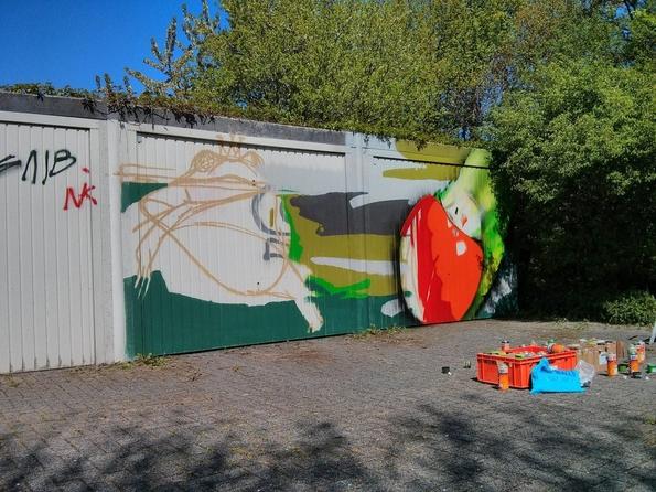 Што да направите ако хулигани ви ја уништат гаражата со графити?