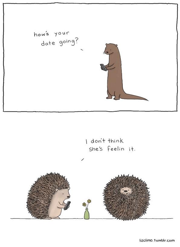 Духовити и остроумни цртежи со животни кои зборуваат