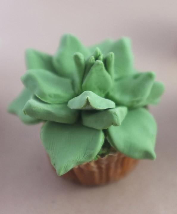 5-slatki-kaktusi-koi-ne-mora-da-se-plashite-da-gi-doprete-kafepauza.mk